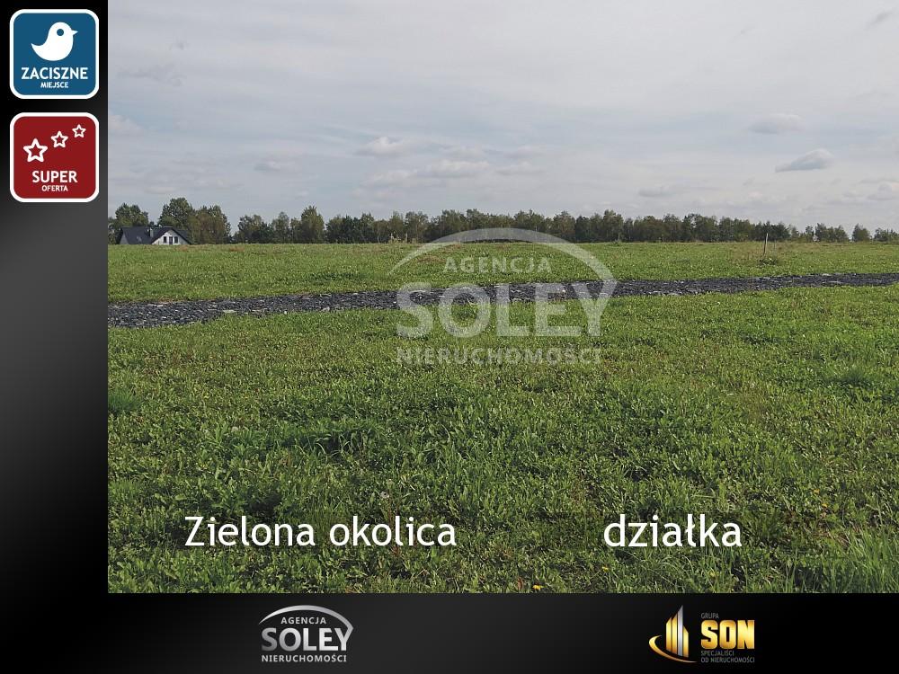 Kliknij aby dowiedzieć się wiecej o saleland-Zielona okolica-Żory