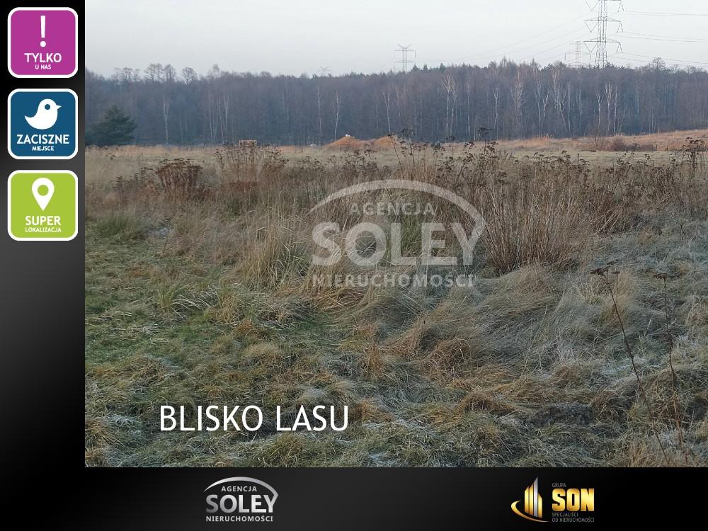 Kliknij aby dowiedzieć się wiecej o saleland-BLISKO LASU-Rybnik