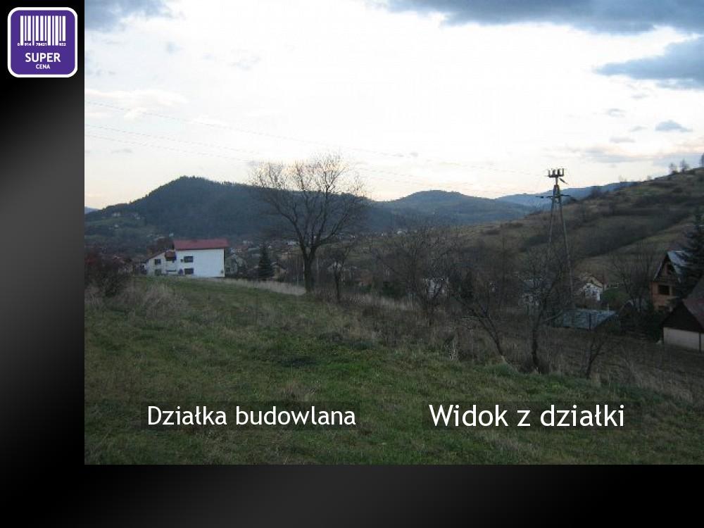 Widok z działki