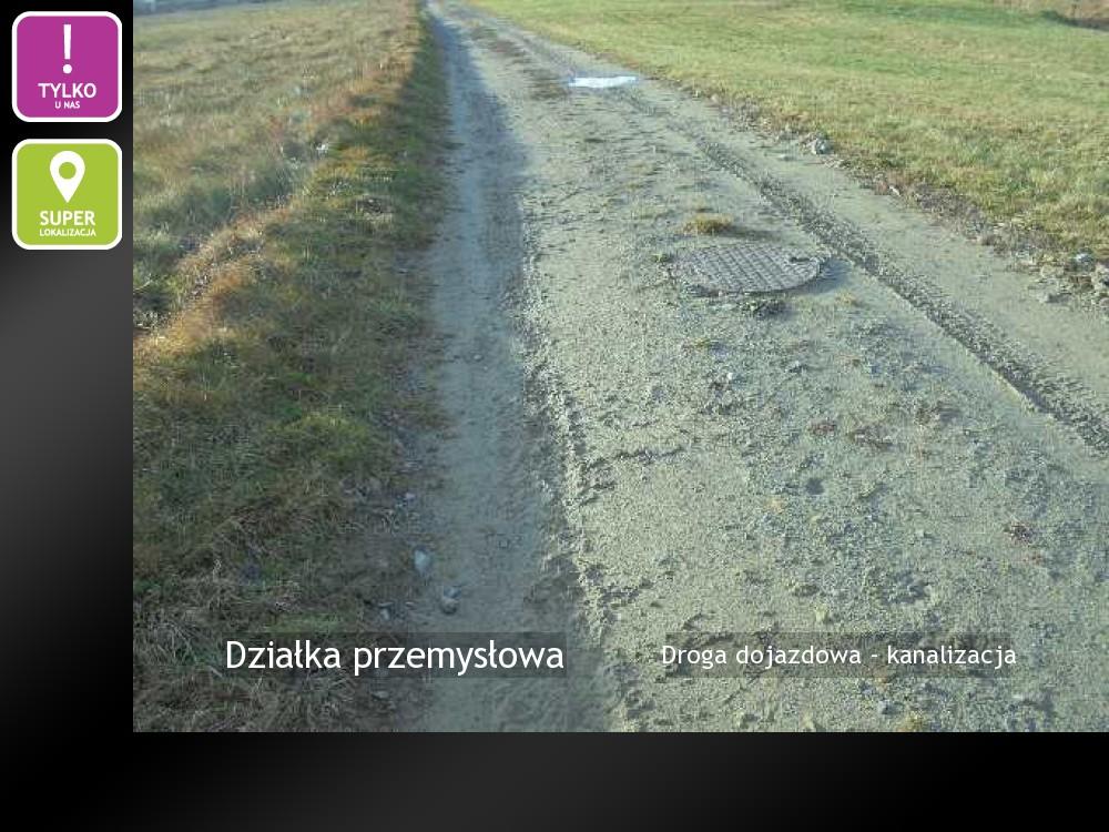 Droga dojazdowa - kanalizacja