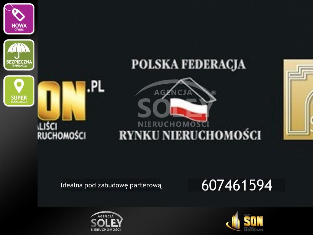 logo soley1